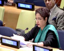 India's policy to isolate Pak a 'fool's errand': Lodhi