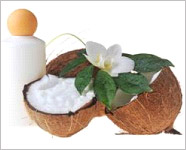 Coconut oil may prevent tooth decay