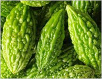Weight loss foods: Karela (Bitter gourd)