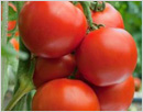 5 health benefits of tomatoes