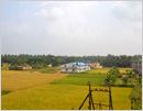 Splendid view of Golden Paddy and pleasing topography from Mangalore-Madgaon Intercity Express