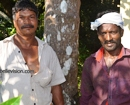 Udupi/M�Belle: Suresh and Navin-Felling risky and dangerously located trees their profession