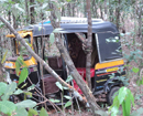 Karkal: Auto rickshaw rolls over in nearby forest at Indaru, all survive