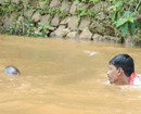 Mumbai: Brave men of Seraje in Manila village gather coconut in bloated river