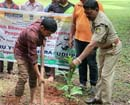 Karkala: Nandalike-Abbanadka Friends Club kick-starts Plant Trees, Save Environ Campaign
