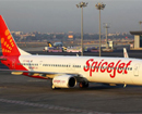 SpiceJet cancels services to Mysore again